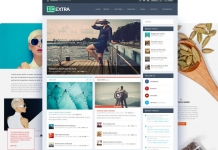 WordPress magazine theme Extra by Elegant Themes