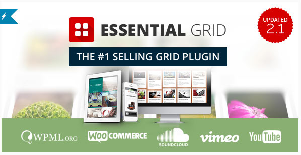 Essential-Grid-Plugin