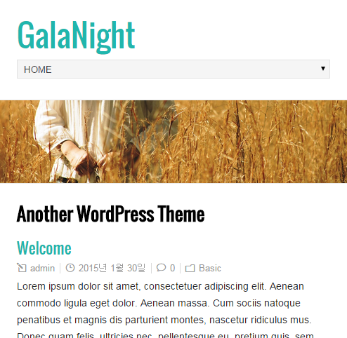 GalaNight Theme for mobile