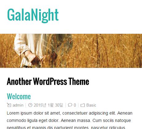 GalaNight_media query