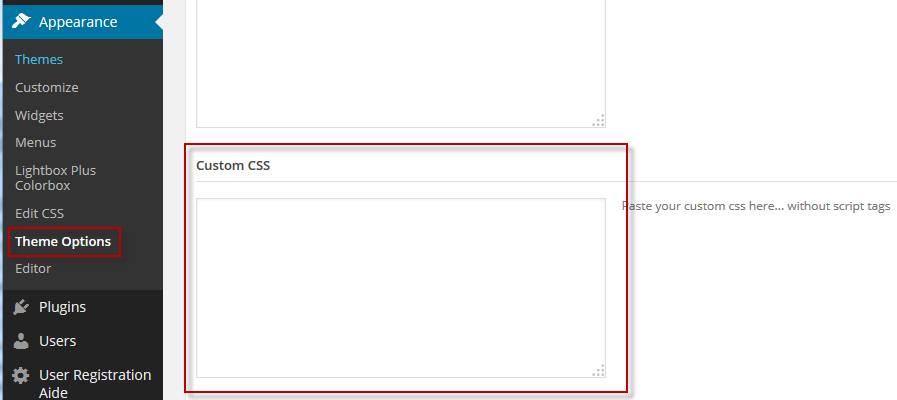 Theme Options Edit CSS