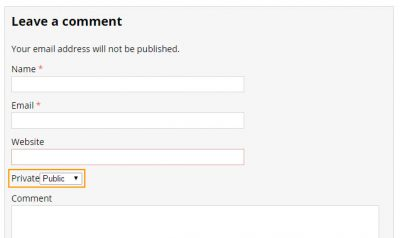 A new comment meta field added in WordPress