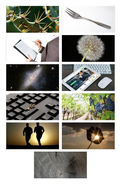 Photo Gallery  - サムネイル(2カラム)