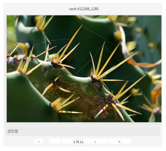 Photo Gallery - 이미지 브라우저