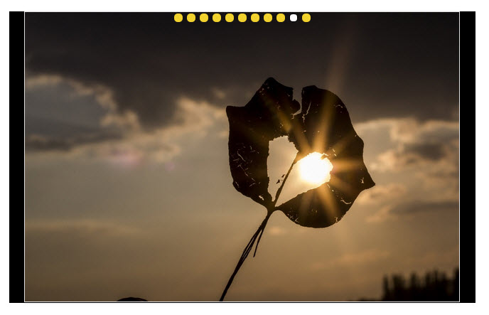 Photo Gallery - 슬라이드쇼