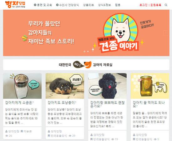 pet - [포트폴리오] 애완견 정보 제공 사이트