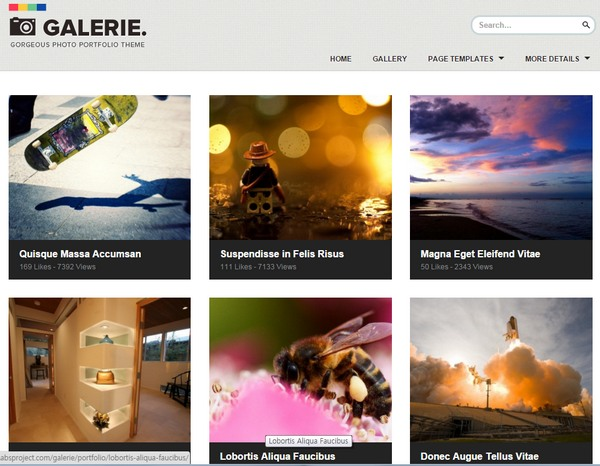 Galerie - WordPress Theme - 워드프레스 포트폴리오 테마
