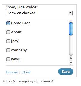 [워드프레스] 페이지별로 다른 메뉴 항목/위젯/사이드바 표시하기