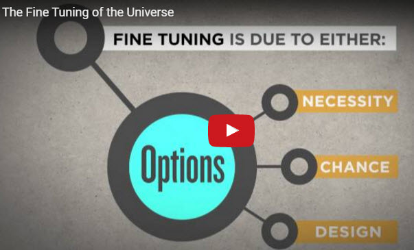 The fine tuning of the universe  -  [動画]の微調整宇宙