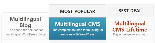 WPML - [워드프레스] 다국어 번역 플러그인 WPML 버전 비교