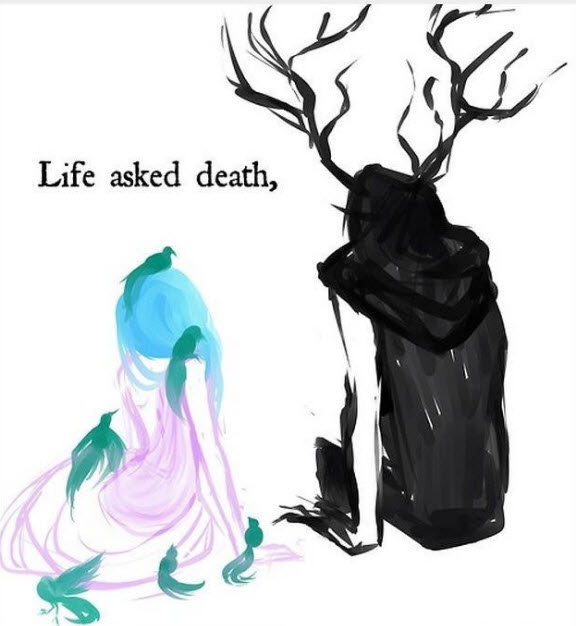 [낙서장] 삶이 죽음에게 묻다