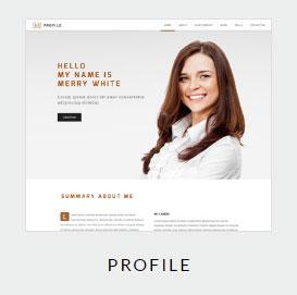 BE-Theme-Profile-Demo