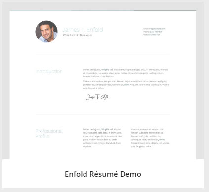 Enfold-Resume-Demo