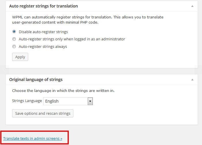 [워드프레스] WPML로 위젯 번역하기