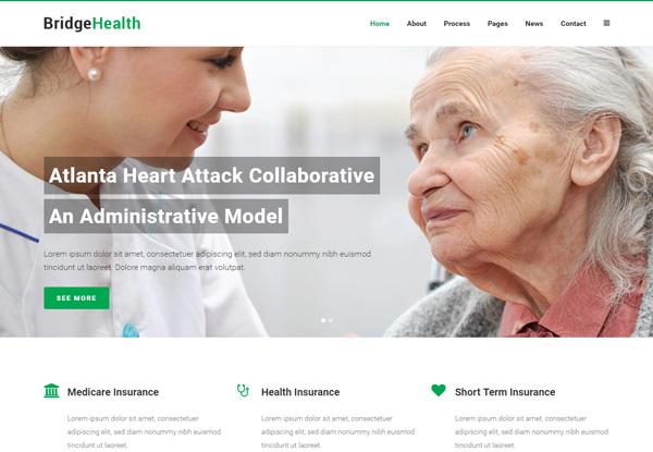 브릿지 Health 데모