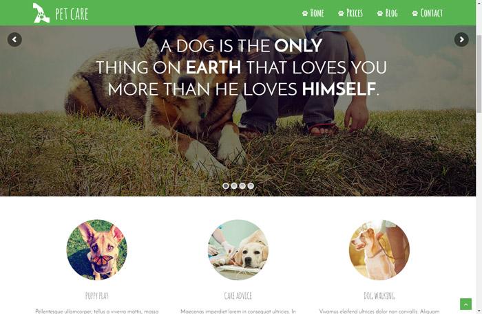 [워드프레스] 애완견 및 동물 관리 관련 테마