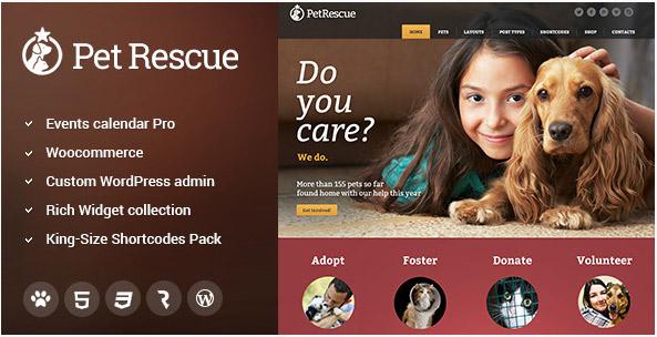 애완견 구조, 동물 보호소 워드프레스 테마