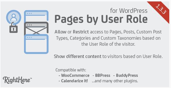 役割に応じて、ページへのアクセス制限