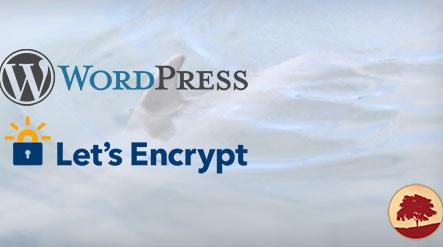 [해외 웹호스팅] Bluehost에서 무료 SSL을 적용하는 방법