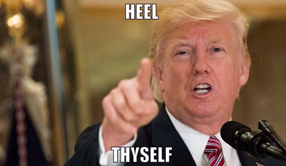 かかと(heel)をかろうじて治癒(heal)したトランプ4