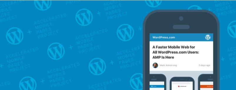 AMP plugin official compressor  -  WordPressで、Google AMPを適用する方法