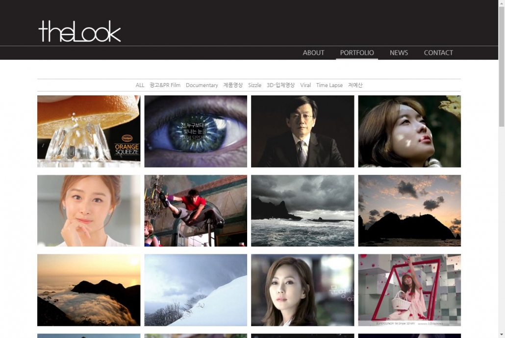 WordPress Newspaper サイト -  theLook